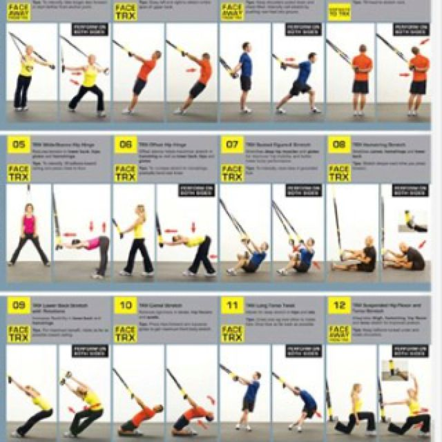 Trx Training Chart Search Results For Printable Exercises