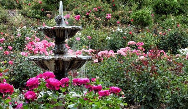 Pin By Bercha On Travel Botanical Gardens Easy Garden Missouri