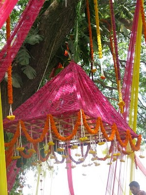 Wedding - the pandal under a tree Flowers and petals @an Indian wedding,