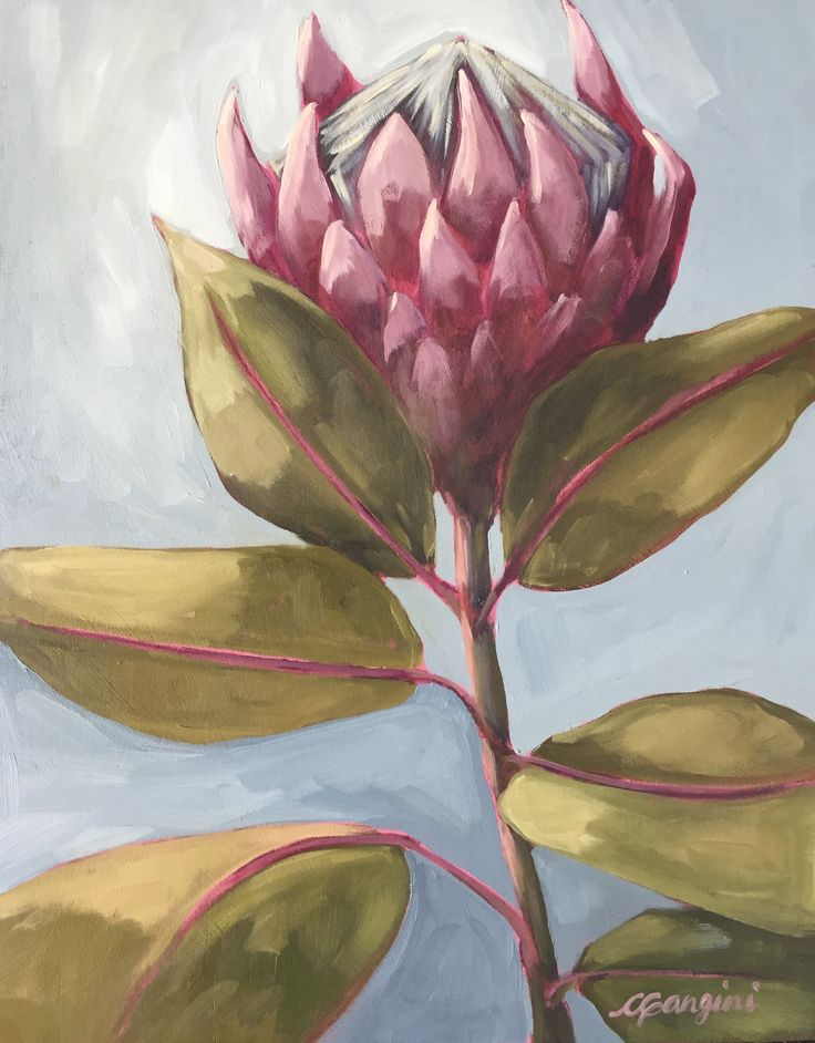 King Protea CGanginiArt Maui oil painting