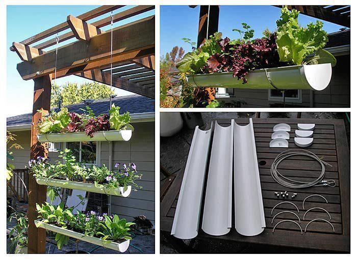 Salat in der Dachrinne. Ob nun auf dem Balkon oder im Garten. Ergibt sicher auch einen netten Sichtschutz