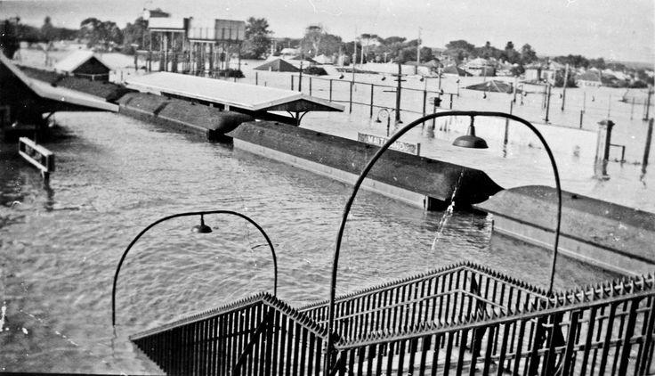 Flooded Maitland Railway Station, Maitland, NSW, (photo undated) possibly 1949?. v@e