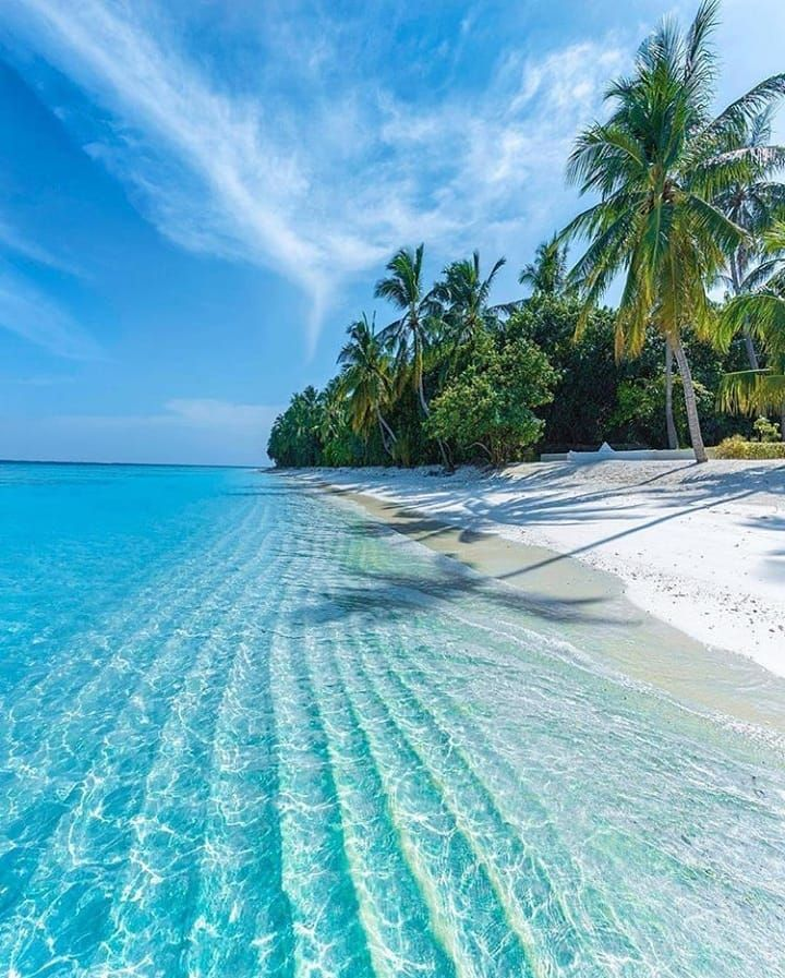Maldives Beach: #maldives #travel #maldivesislands #ocean #beach