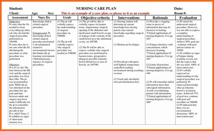 Example Care Plan Template For Elderly Nursing Home ...