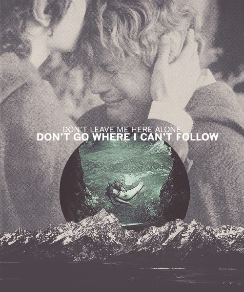 "The relationship between Sam and Frodo is perhaps the truest friendship in all of fiction.   ""Don't leave me here alone.  Don't go where I can't follow."" --Samwise Gamgee. <3 <3 <3"
