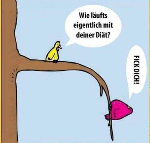 German swearwords | German Language Workshop