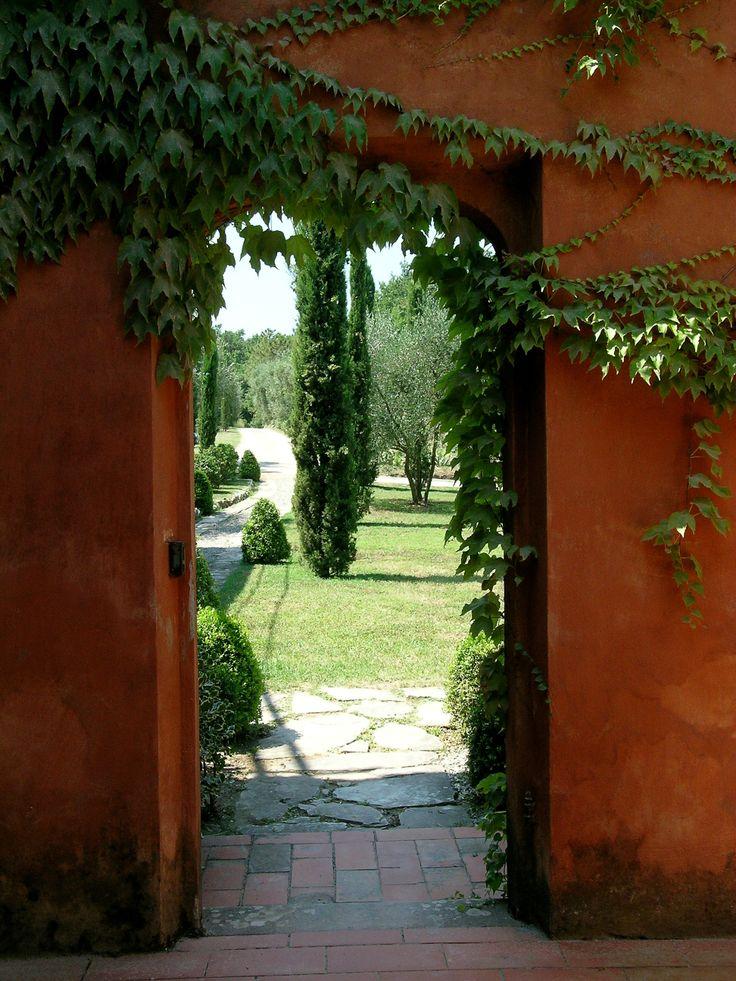 Parco privato sulle colline versiliesi