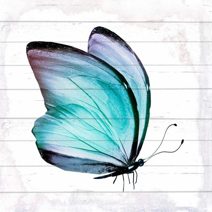 Home Affaire Holz Bild »Schmetterling« Blau, (B/H): 40/40cm Jetzt Bestellen  Unter: Https://moebel.ladendirekt.de/dekoration/bilder Und Rahmen/bilder/?uidu003d  ...