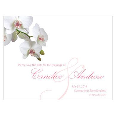 THe knot shopClassic Orchid Save The Date Card can do in lavender