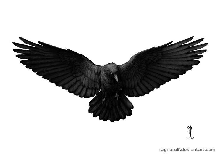 Image from http://img08.deviantart.net/1585/i/2015/047/f/7/crow_tattoo_design_by_ragnarulf-d8i8z7m.jpg.