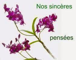 Condoléance texte ~ Message de condoléances - sms de condoléances ...