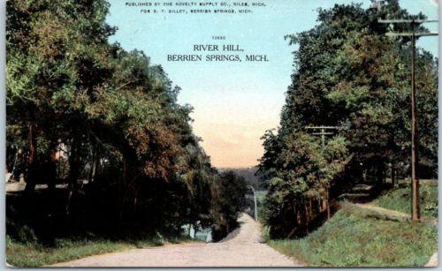 Berrien-Springs-Michigan-Postcard-034-RIVER-HILL-034-Road-View-w-1909-MI-Cancel