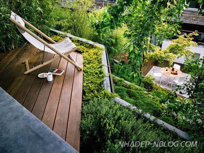Trong điều kiện môi trường sống càng ngày càng ít không gian xanh, mẫu thiết kế sân vườn này sẽ cung cấp cho bạn 1 ý tưởng tuyệt