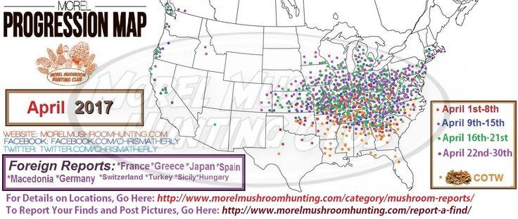 Morel (and other mushrooms) Progression Sightings Map 2017   Morel Mushroom Hunting Club
