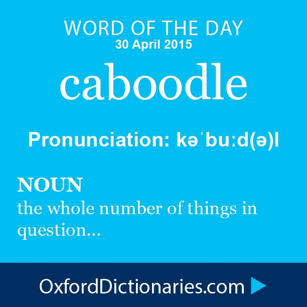 caboodle (noun): The whole number or quantity of people or things in question. Word of the Day for 30 April 2015. #WOTD #WordoftheDay #caboodle