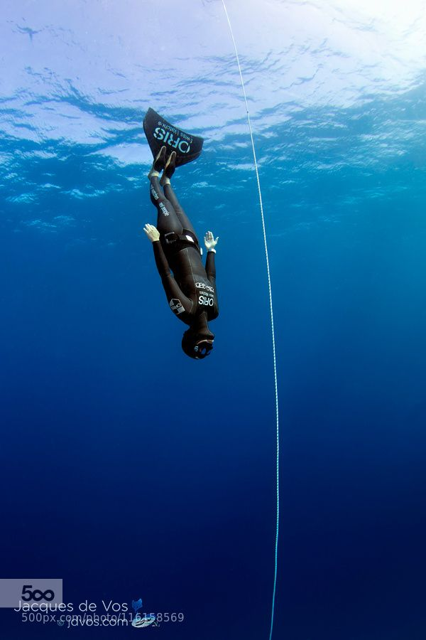 17 Best Images About Free Diving Passion On Pinterest