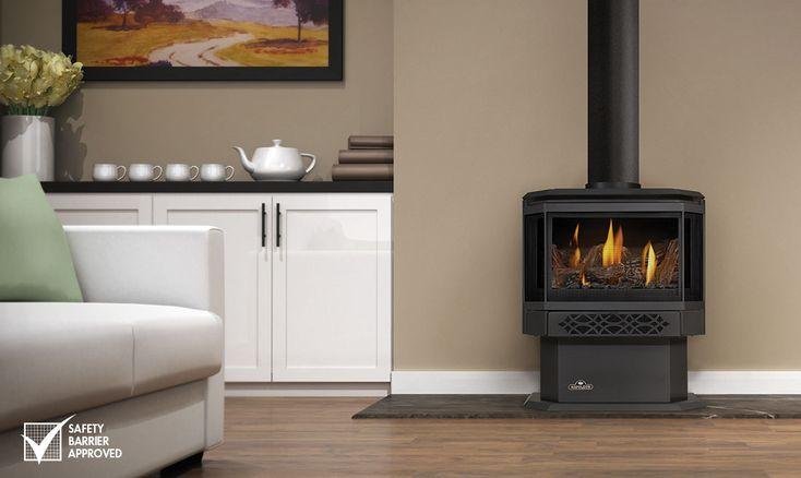 gds28 napoleon fireplaces - Haliburton
