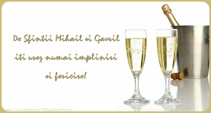 De Sfintii Mihail si Gavril iti urez numai impliniri si fericire!