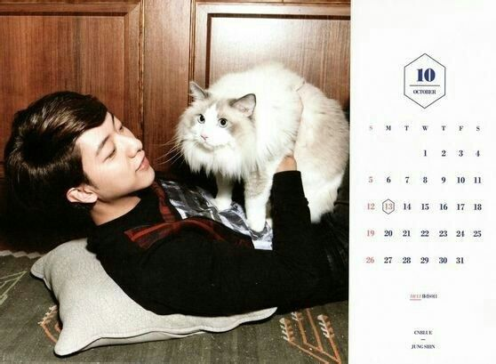 CNBLUE Calendar 2014 October