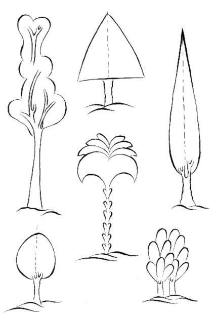 Cahide Keskiner, Minyatür Sanatında Doğa Çizim ve Boyama Teknikleri  Belirli formlardaki ağaçlar