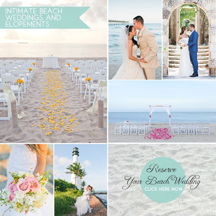 Small Beach Wedding Ideas: 17 Best Images About Small Miami Weddings Portfolio On