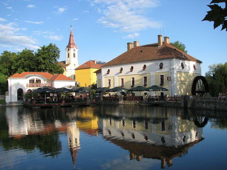 Malom-tó (Tapolca) http://www.turabazis.hu/latnivalok_ismerteto_3619 #latnivalo #tapolca #turabazis #hungary #magyarorszag #travel #tura #turista #kirandulas