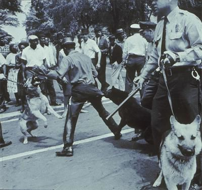 Black civil rights demonstrator attacked by a dog in Birmingham, Alabama 1963.