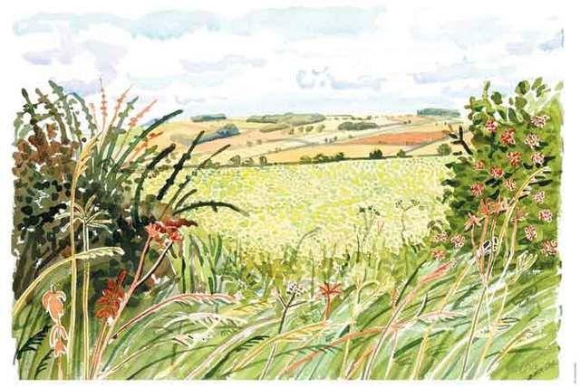 David Hockney watercolour drawings - Google Search