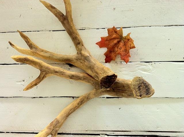 Homemade antlers: Pb Antlers, Diy Faux, Deer Antlers, Deer A Pb, Faux Antlers, Craftberri Bush, Branches, Inspiration Tutorials, Antlers Inspiration