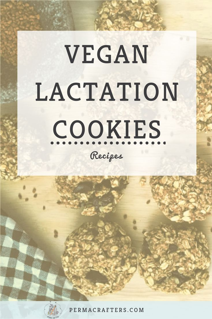 Try: this delicious vegan lactation cookies recipe and eat them whether or not you're a nursing mama!, vegan, lactation cookies, nursing, breastfeeding recipes, vegan recipe, healthy snacks, #healthyrecipes
