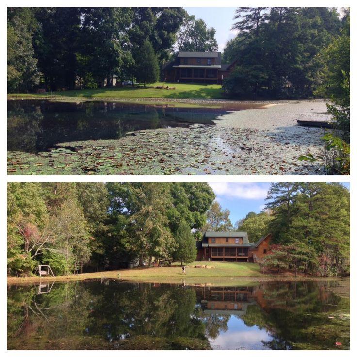 14 best call 704 816 0526 algae aquatic weeds 864 381 for Large pond maintenance