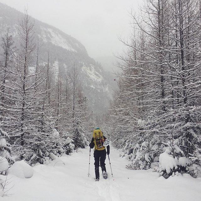 les 20 plus beaux sites pour faire du ski de fond ou de la