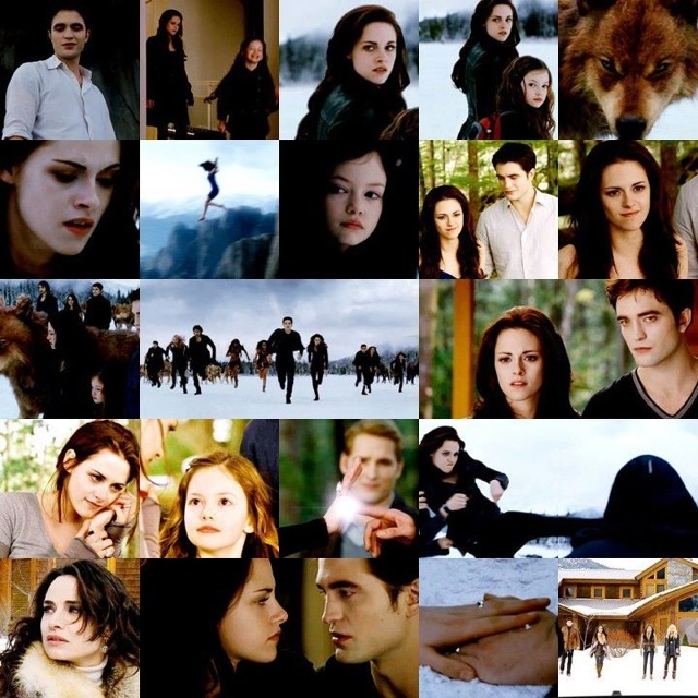 Twilight Wedding Song: 17 Best Images About Twilight Saga On Pinterest