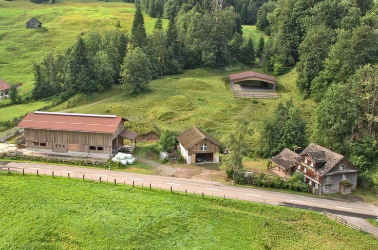 Pferdehof mit 13.8 ha Land in hügeligem Gelände in Ennetbühl bei Nesslau SG