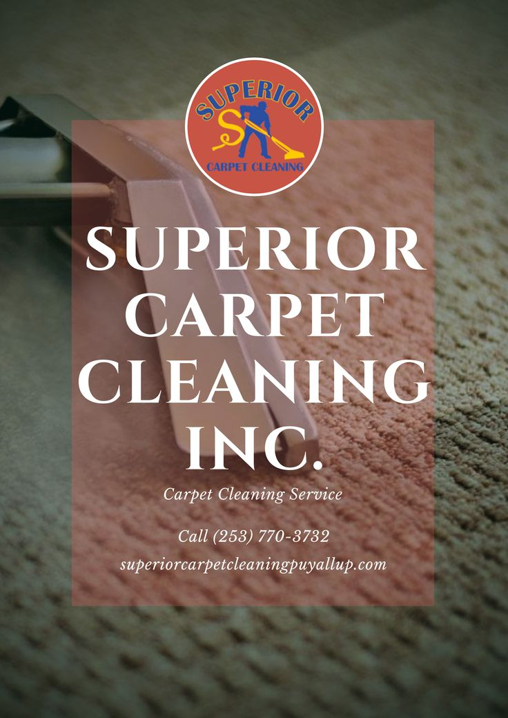 Services Offered: Organic Carpet Cleaning in Puyallup, WA Apartment Cleaning in Puyallup, WA Carpet and Fabric Protection in Puyallup, WA Commercial Carpet Cleaning in Puyallup, WA Affordable Carpet Cleaning in Puyallup, WA Professional Carpet Cleaning in Puyallup, WA Superior Carpet Cleaning in Puyallup, WA Carpet Cleaning Services in Puyallup, WA Superior Homes in Puyallup, WA