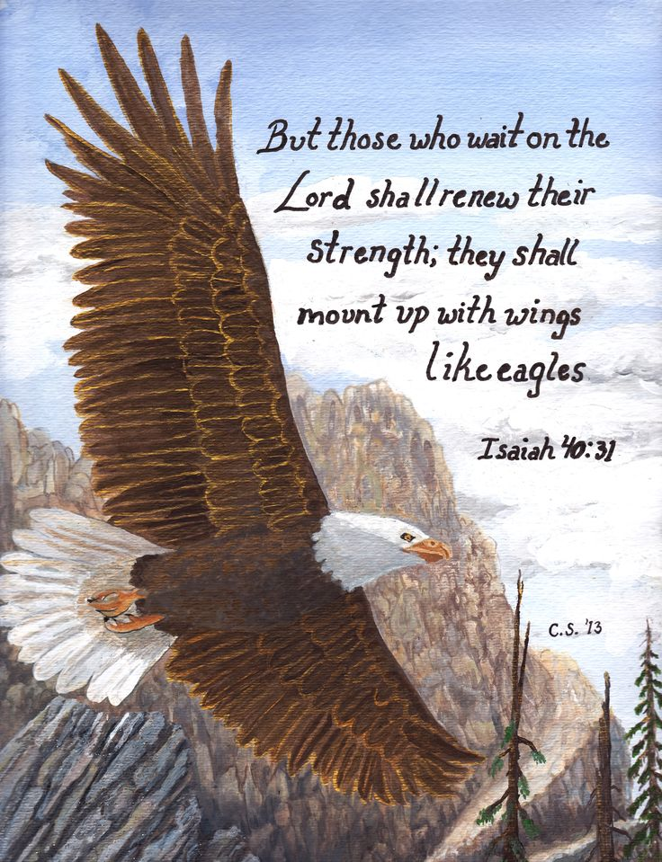 scripture christian painting eagle art by catherine ...