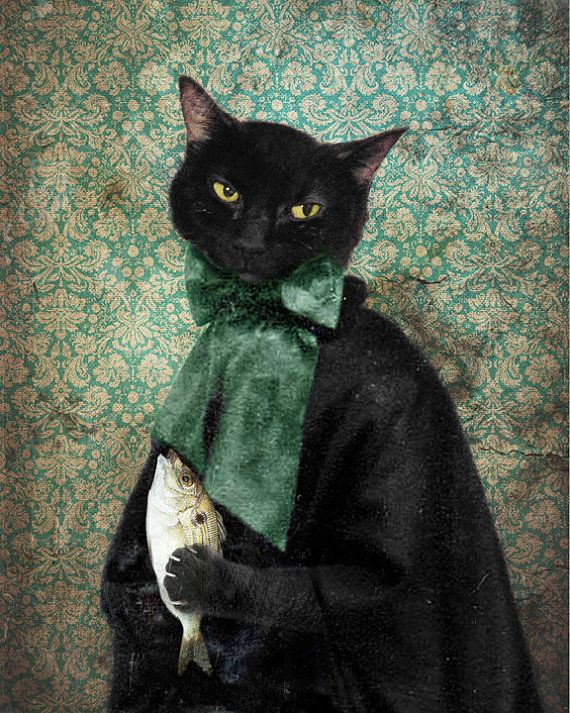 Lady Jigger (Case of the Missing Fish) Black Cat Print  Animal Photography Pet by The Lonely Pixel Photography on Etsy, $30.00