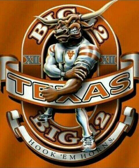 803 best longhorn inspiration images on pinterest texas texas longhorns sciox Images