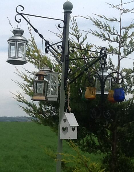 55 best images about bird feeders on pinterest hanging for Whole coconut bird feeders