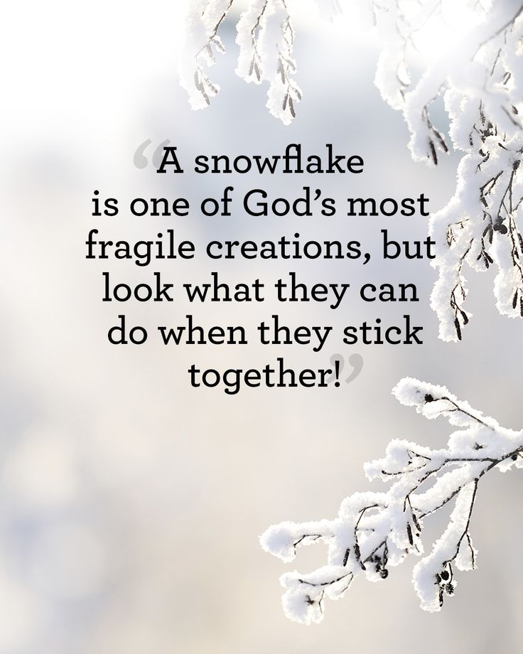 """A snowflake is one of God's most fragile creations, but look what they can do when they stick together!"""