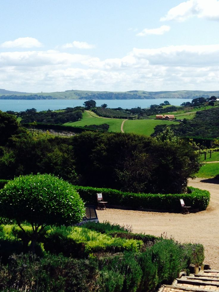 New Zealand's Waiheke island. Home to 40 wine vineyards.