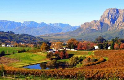 Cape Winelands Tour - The Cape WInelands regions are characterised by natural scenery, time-honoured cultural heritage and worlclass wine estates. This tour takes you on a journey through Paarl, Stellenbosch & Franschoek.