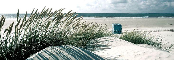 Strandhafer und Strandkorb am Strand von Amrum, © Kai Quedens/www.nordseetourismus.de