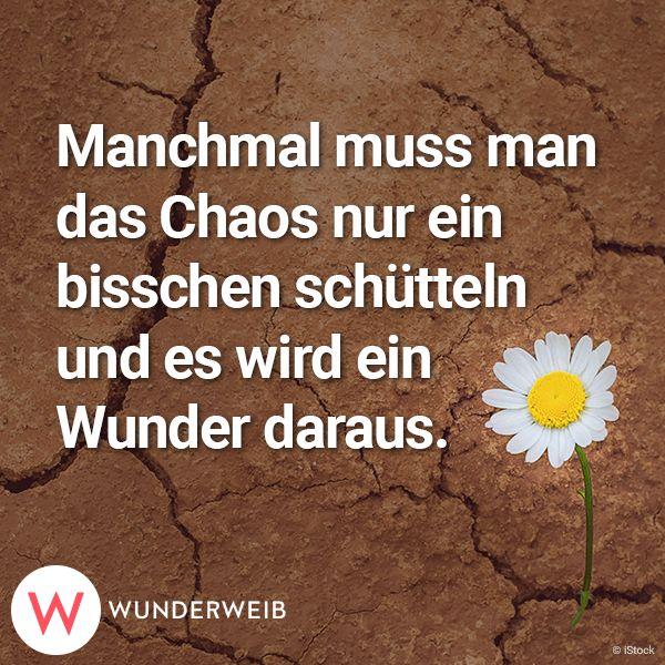 single kostenlos schreiben München