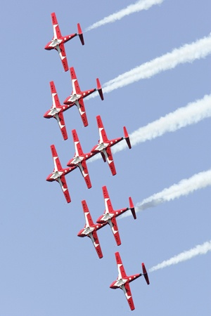 The Snowbirds- The Snowbirds Demonstration Team (431 Squadron) is comprised of serving members of Canadian Armed Forces who perform across Canada.
