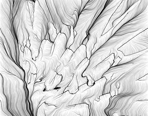 Leonardo Solaas • linear landscape