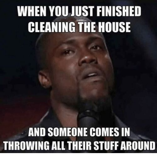 15 Incredibly Funny Cleaning Memes