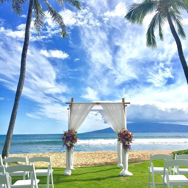 Palm Trees Ocean Breeze On A Gorgeous Wedding Day Hyattmauiweddings Bestdayever