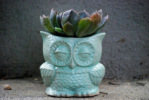 indoor owl Planter pencil holder desk vase in mint  by claylicious, $35.00