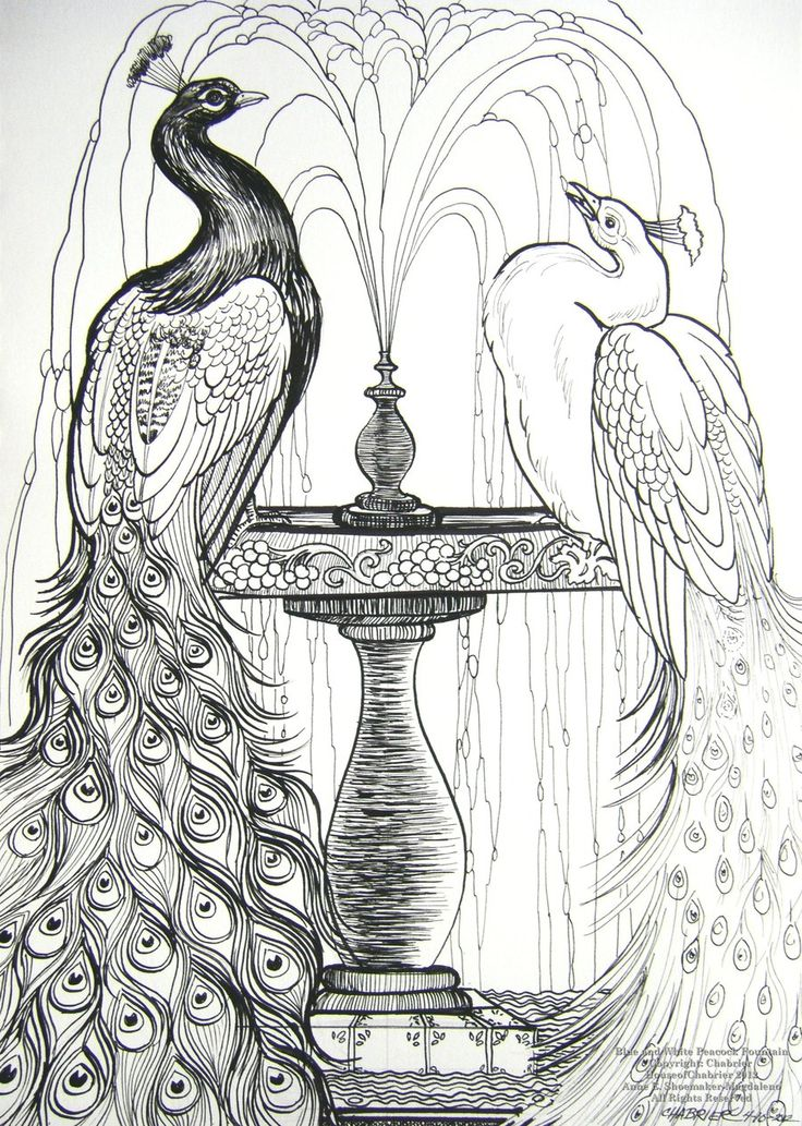 Blue and White Peacocks by HouseofChabrier.deviantart.com on @deviantART